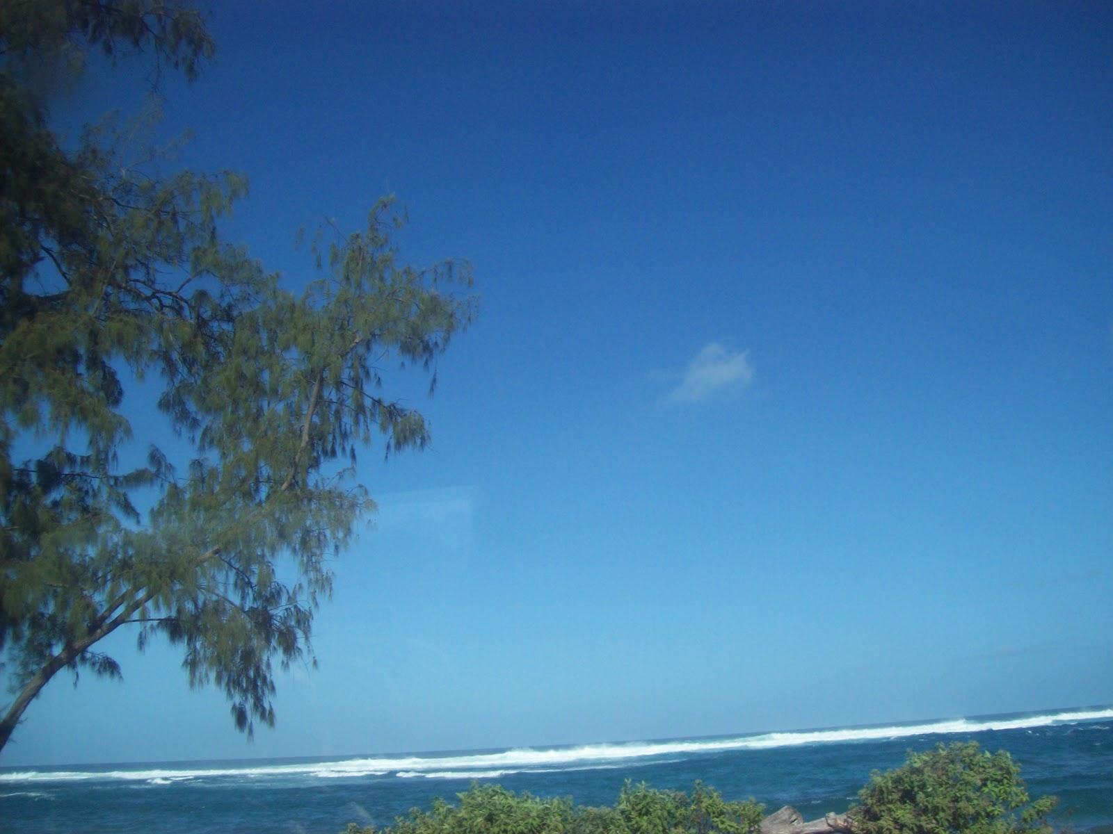 Hawaii Day 3 - 100_6954.JPG