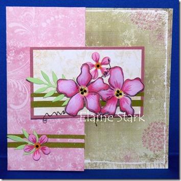 Elaine - summer flowers