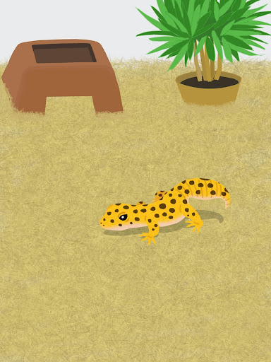 My Gecko -Virtual Pet Simulator Game- 1.1 screenshots 4