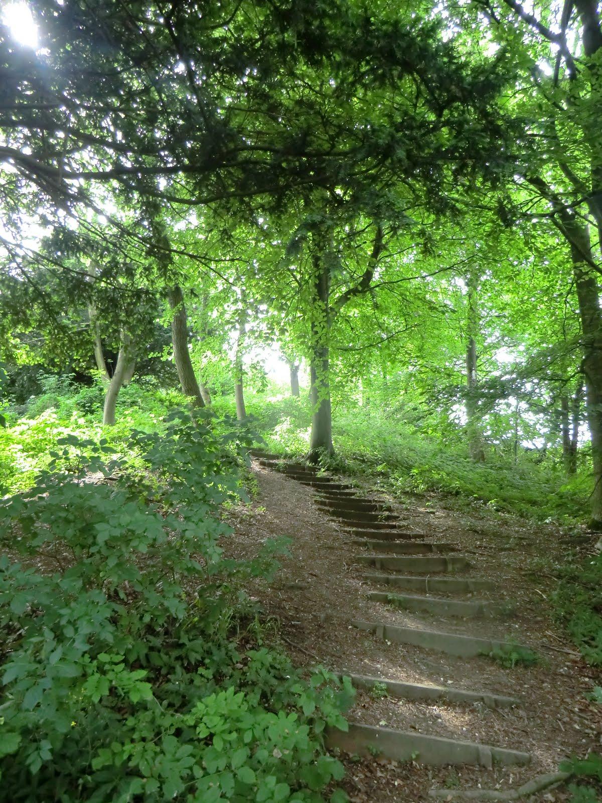 CIMG2397 Steps down from Thurnham Castle