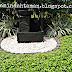 Tukang Taman Minimalis Professional Jakarta