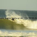 _DSC9185.thumb.jpg