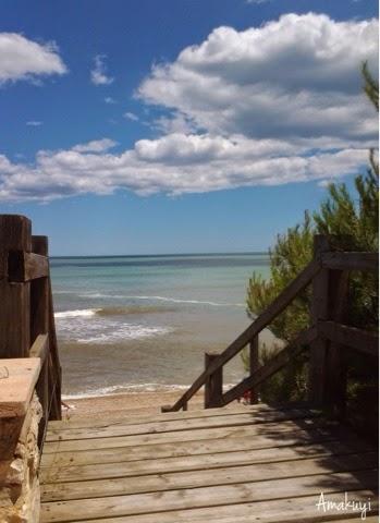 Hoy-compartimos-camino-playa