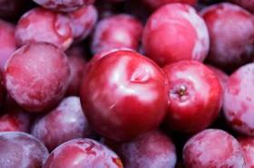 manfaat plum , khasiat plum , gambar foto buah plum merah