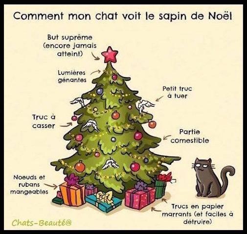 Les chats et les sapins de Noël