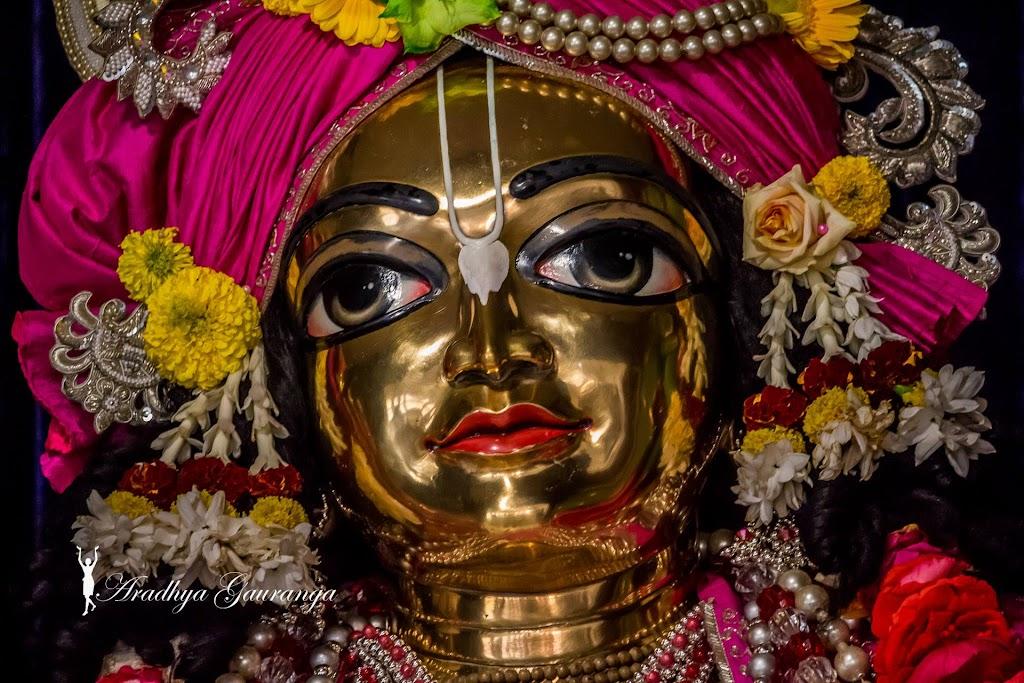 ISKCON Mayapur Deity Darshan 18 Jan 2017 (11)