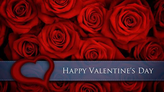 Valentinovo besplatne ljubavne slike čestitke pozadine za desktop 2560x1440 free download Valentines day 14 veljača biljke ruža cvijeće