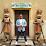Keshav gupta's profile photo
