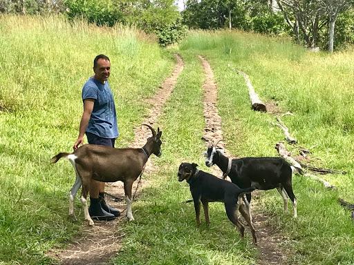 goat-herderers-2017-12-24-16-11.jpg