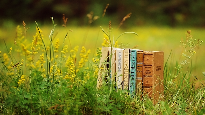 old book pasture wallpaper, spring
