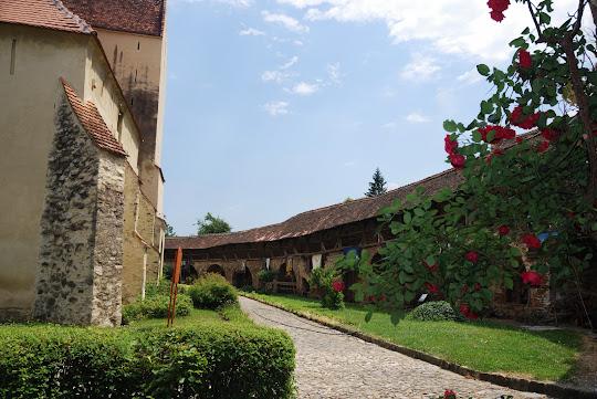 Kirchenburg in Cisnadie