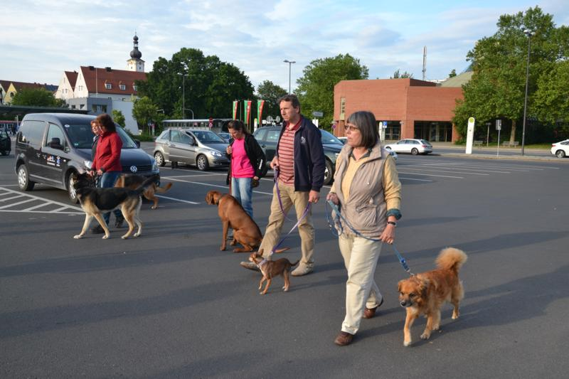 On Tour in Weiden: 2015-06-15 - DSC_0438.JPG