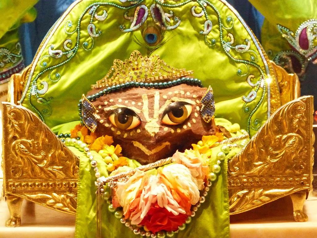 ISKCON New Govardhan Deity Darshan 01 Mar 2016 (9)