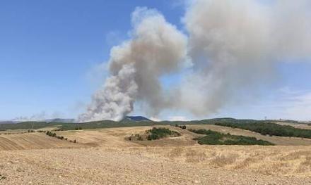 Λάρισα : Μεγάλη έκταση παίρνει το μέτωπο της πυρκαγιάς στο Κιλελέρ