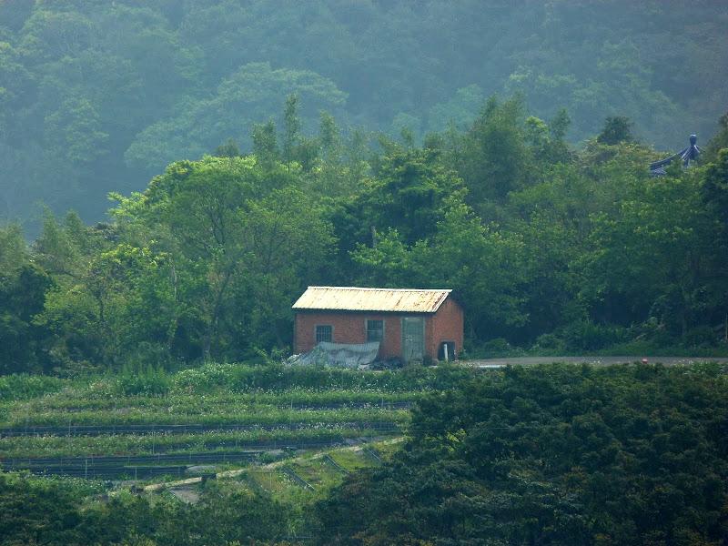 TAIWAN Taoyan county, Jiashi, Daxi, puis retour Taipei - P1260404.JPG