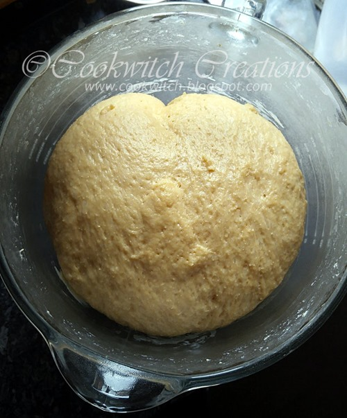 Risen plain dough