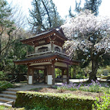 2014 Japan - Dag 7 - mike-P1050641-0177.JPG