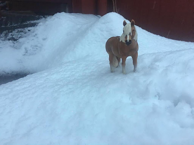 Caballos Schleich en la nieve