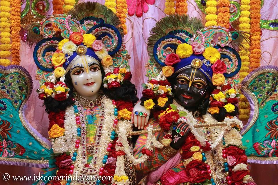 ISKCON Vrindavan Sringar Deity Darshan 15 Jan 2016  (8)