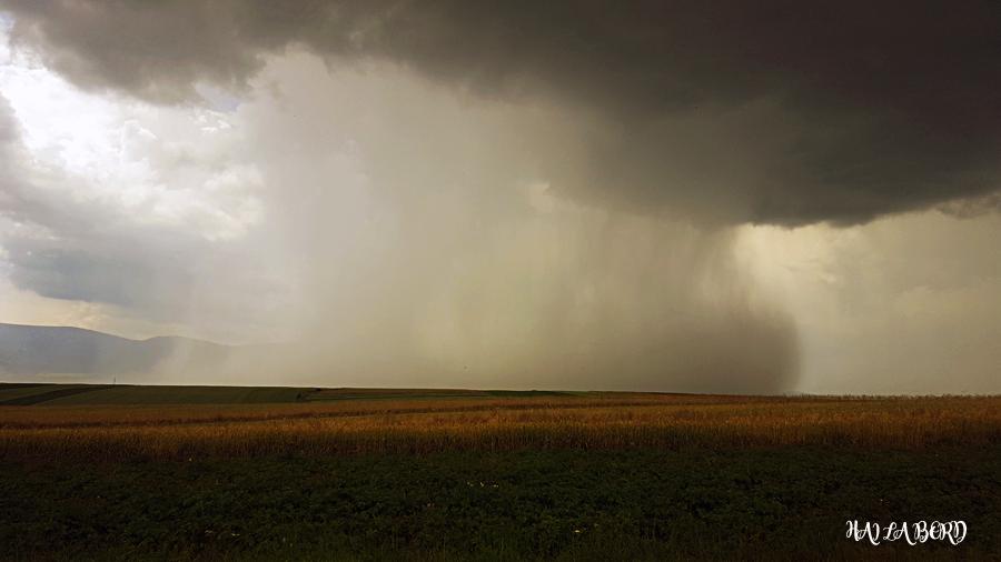 furtuna tinutul secuiesc iulie 2016
