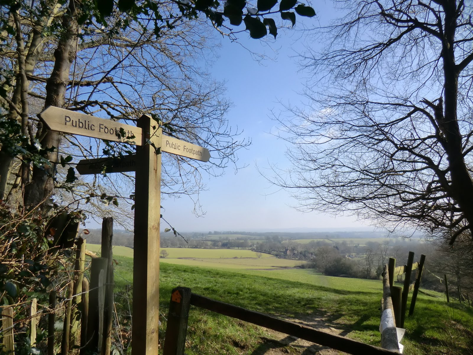 CIMG2888 New footpath option at Tenchleys Wood