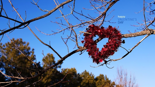 Valentinovo besplatne ljubavne slike čestitke pozadine za desktop 1920x1080 free download Valentines day 14 veljača