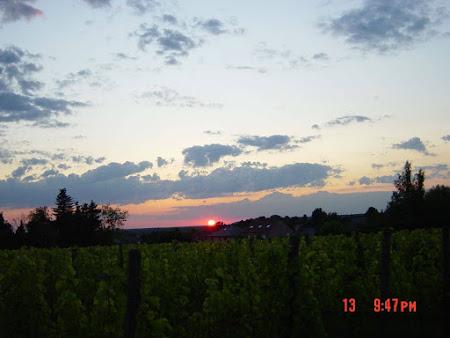 Gans de dag zon op de Uilenberg, dat maakt het verschil!