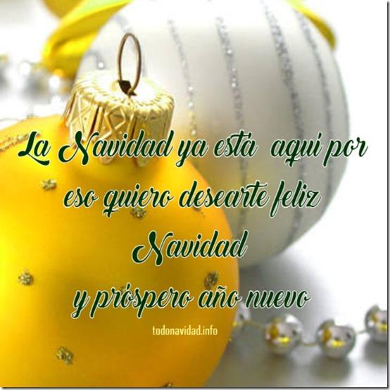 navidad 44