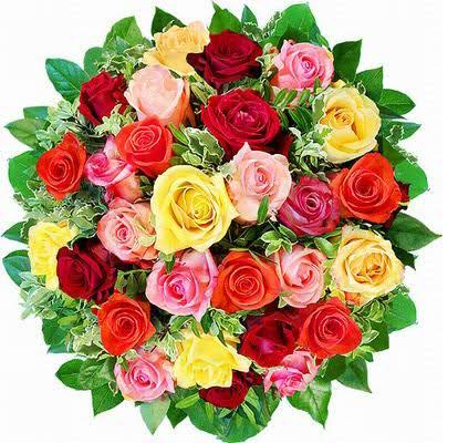 blomster%252520%2525281354%252529.jpg?gl=DK