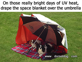Space blankets are good for reflecting those UV heat rays on really bright sunny days