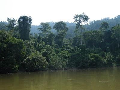 テンベリン川:藻南公園