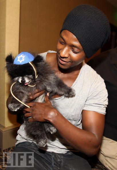 Edi Gathegi and a dog