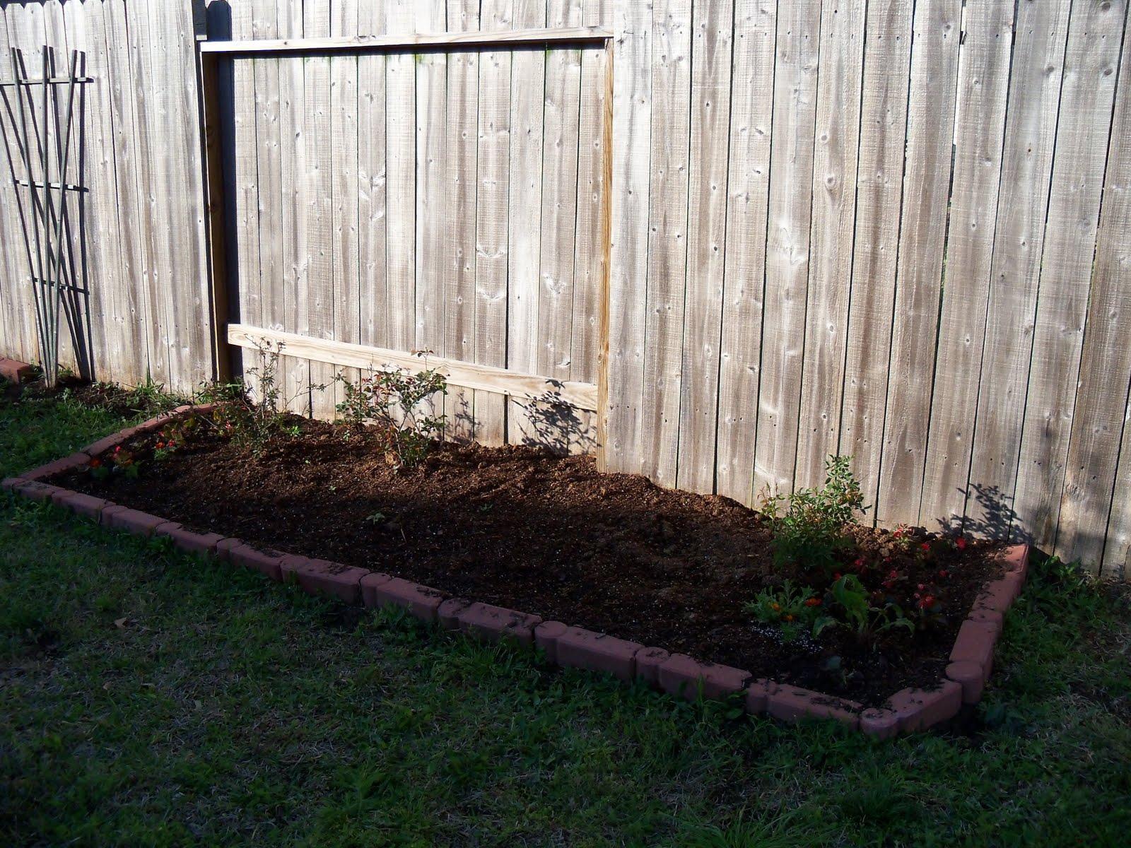 Gardening 2010 - 101_0284.JPG