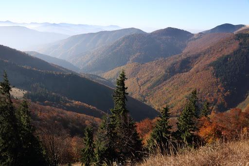 Dolina Bystrička z Osnice