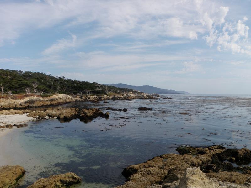 California Coast • 17-Mile Drive