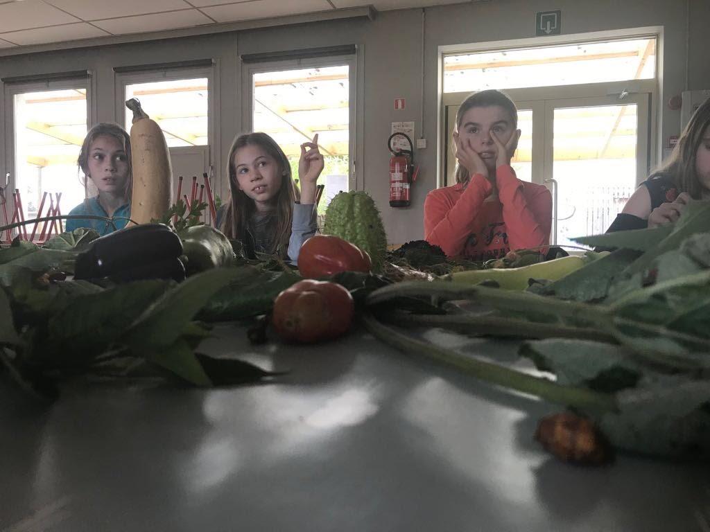 Vergeten groenten - IMG_8736.JPG