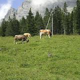 Campaments a Suïssa (Kandersteg) 2009 - CIMG4661.JPG