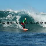 DSC_2319.thumb.jpg