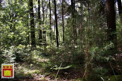excursie in bossen  van overloon 18-08-2012 (22).JPG