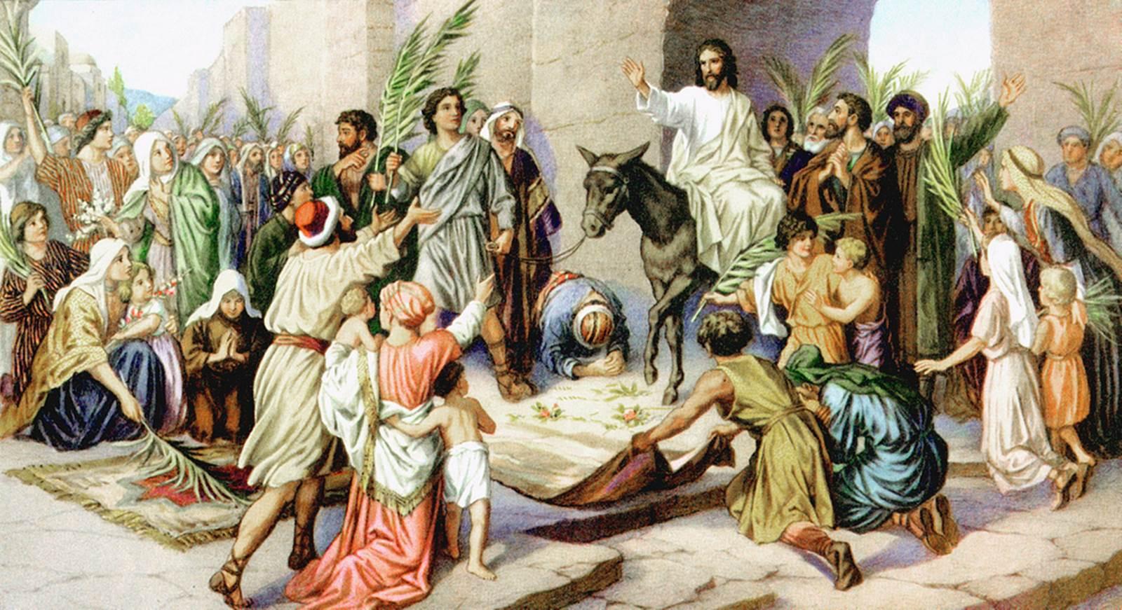 Ông này là ai vậy? (05.4.2020 – Chúa Nhật Lễ Lá)