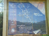 Panel recorrido por las pinturas de Selva Pascuala