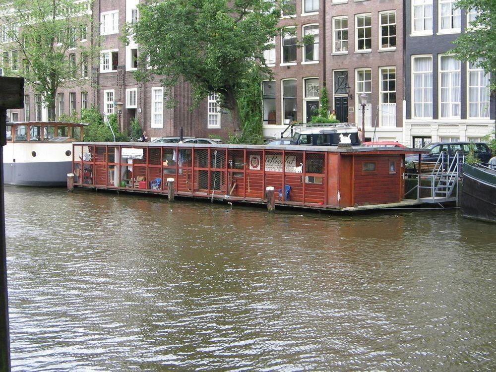de-poezenboot-8