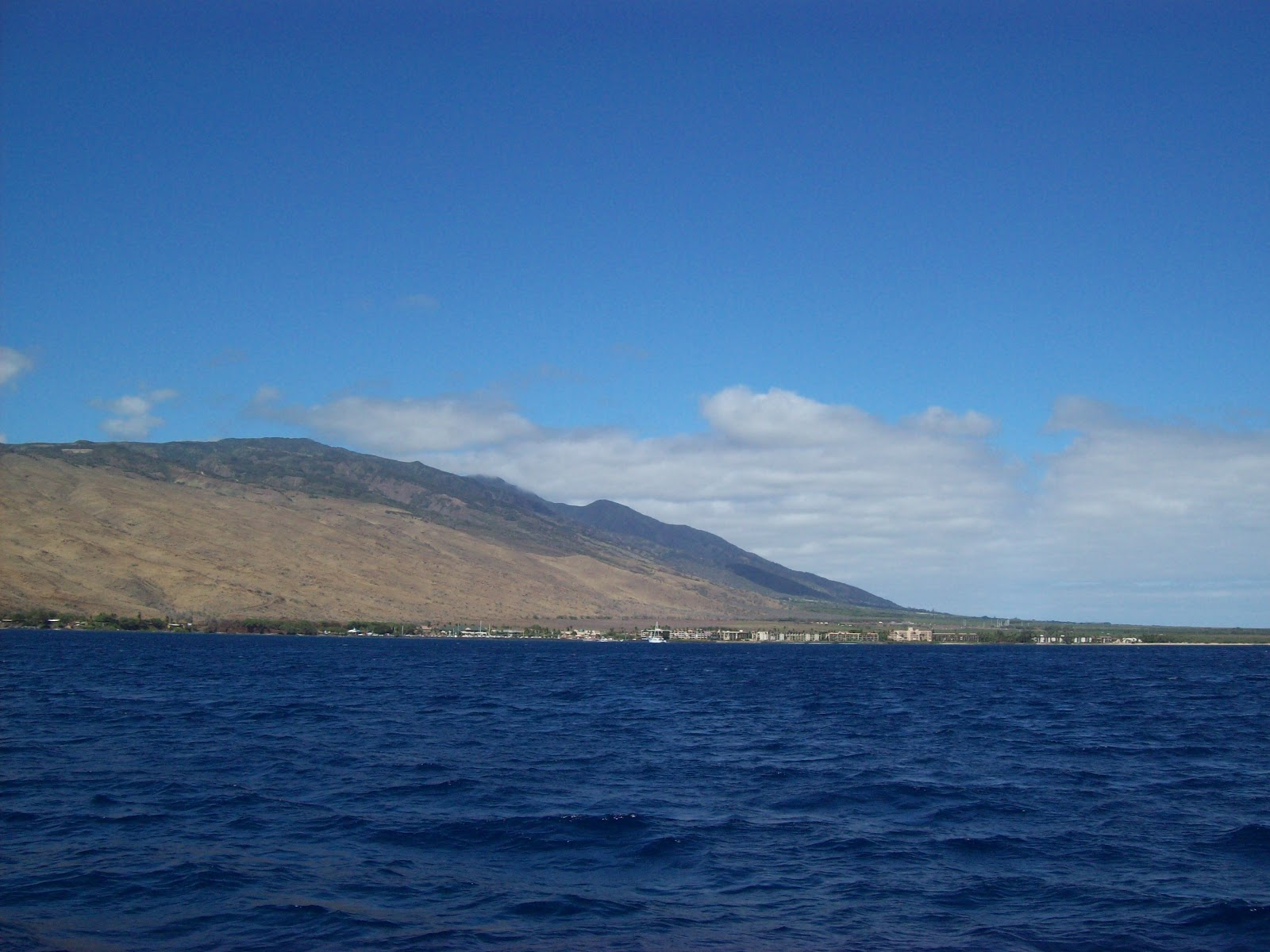 Hawaii Day 7 - 100_7926.JPG