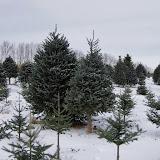 Vermont - Winter 2013 - IMGP0505.JPG