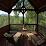 Blue Sky Cabin Rentals LLC's profile photo