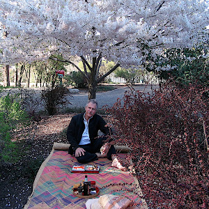 Hanami in Paradise 4/19/06