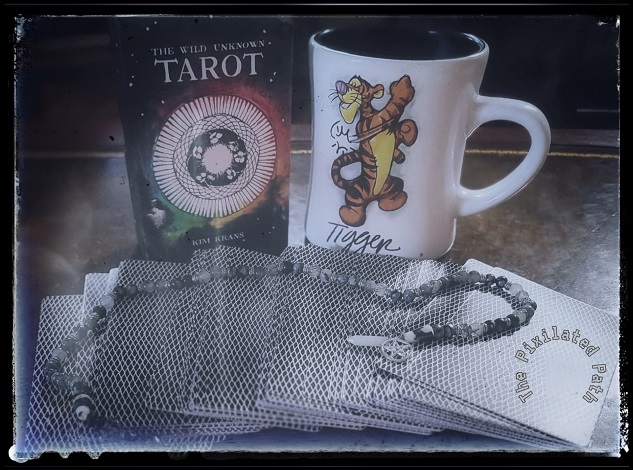 Foresight Friday reading using The Wild Unknown Tarot