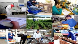 Algérie : le partenariat entre la formation professionnelle et de l'emploi a amélioré l'insertion des diplômés à Tizi-Ouzou