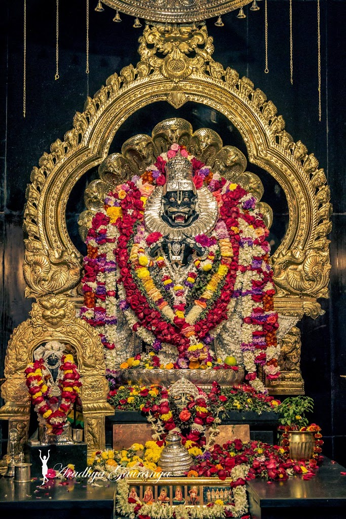 ISKCON Mayapur Deity Darshan 13 Jan 2017 (12)