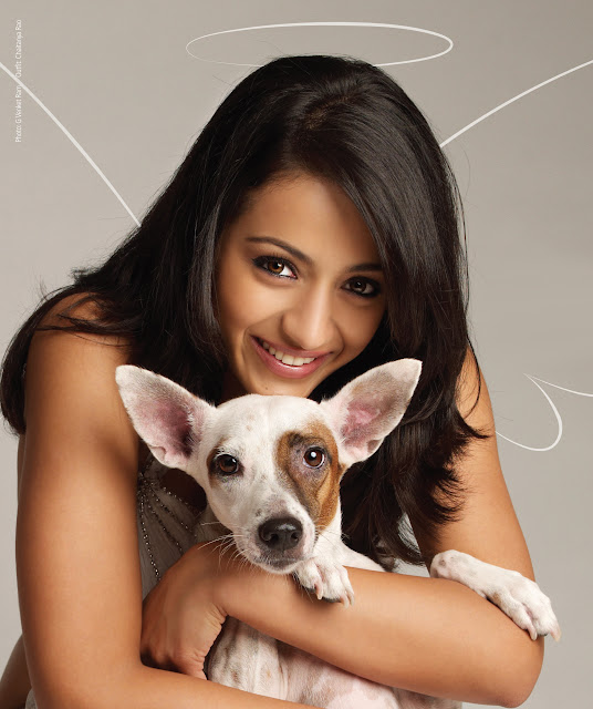 Trisha Krishnan and a dog